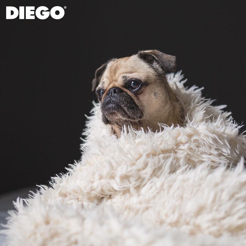 diego-sm-06