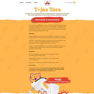 koronastojas-tojastura-03-thumb