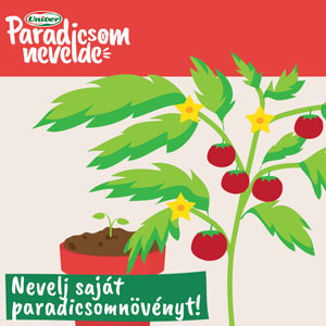 univer-paradicsomnevelde-06-thumb